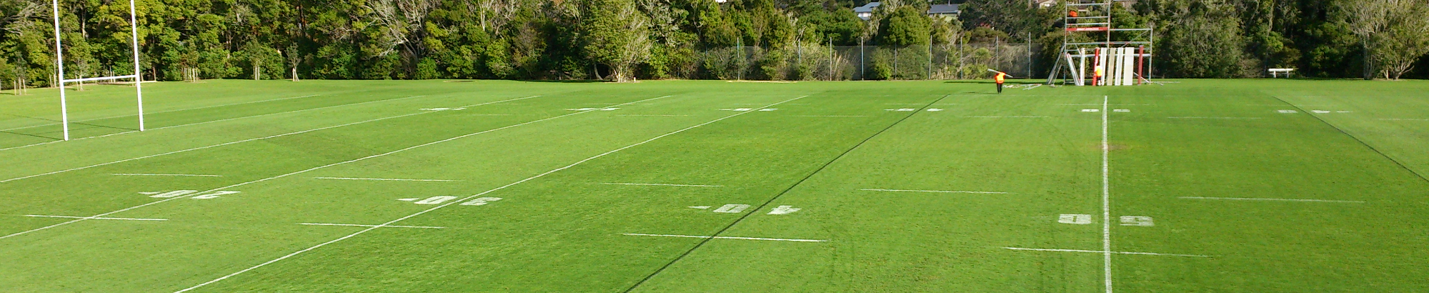 slider sportsfield of the year 2009