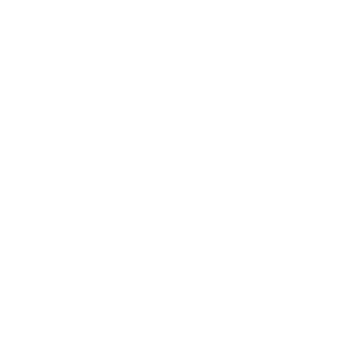 Queenstown white logo
