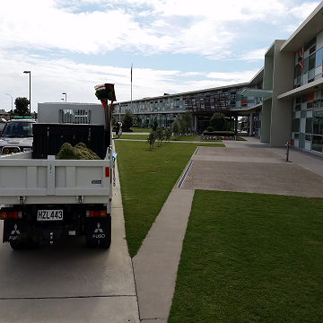 Papamoa small